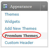 The new premium themes tab