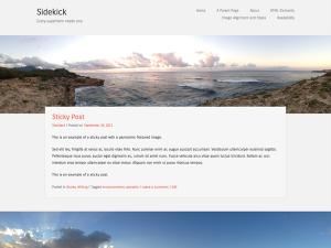 Sidekick-uf1d83