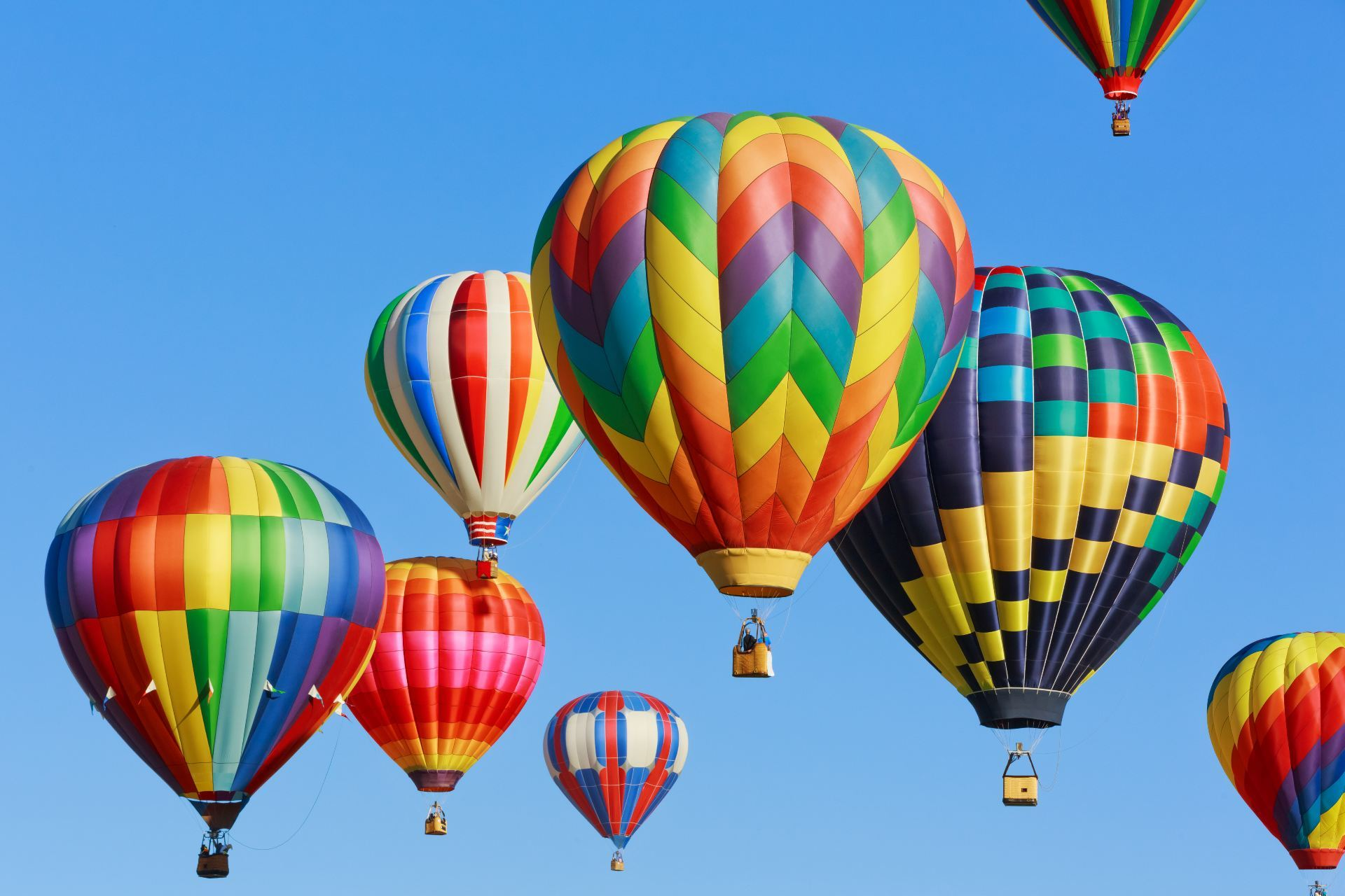Colorful hot air balloons in the sky | Global2 CampusPress showcase